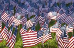 Field of American flags on Memorial Day.
