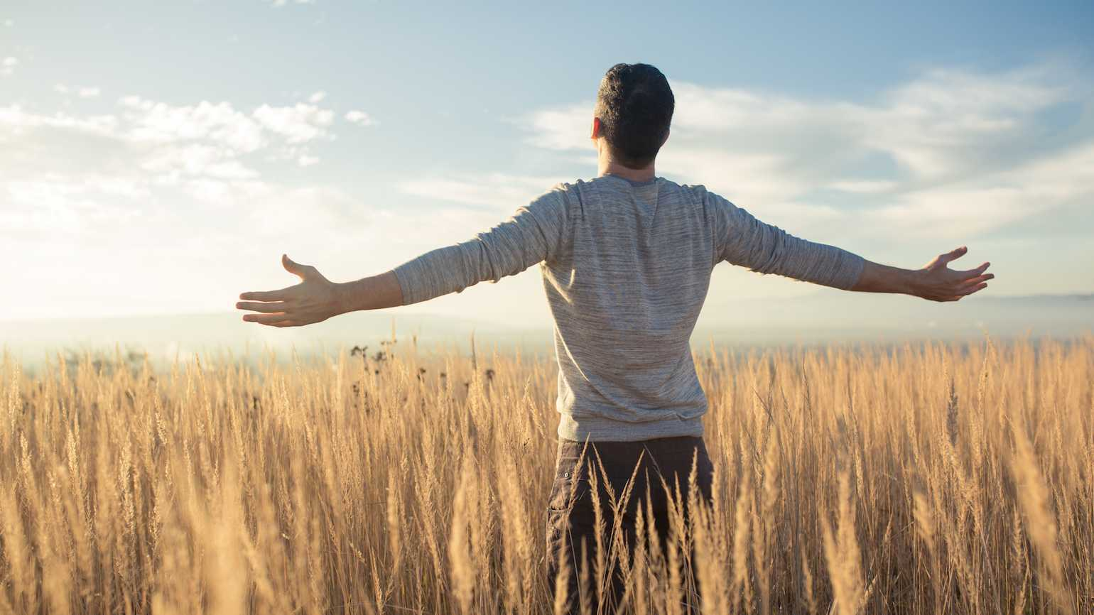 A man stands, arms outstretched, in a sun-drenched field