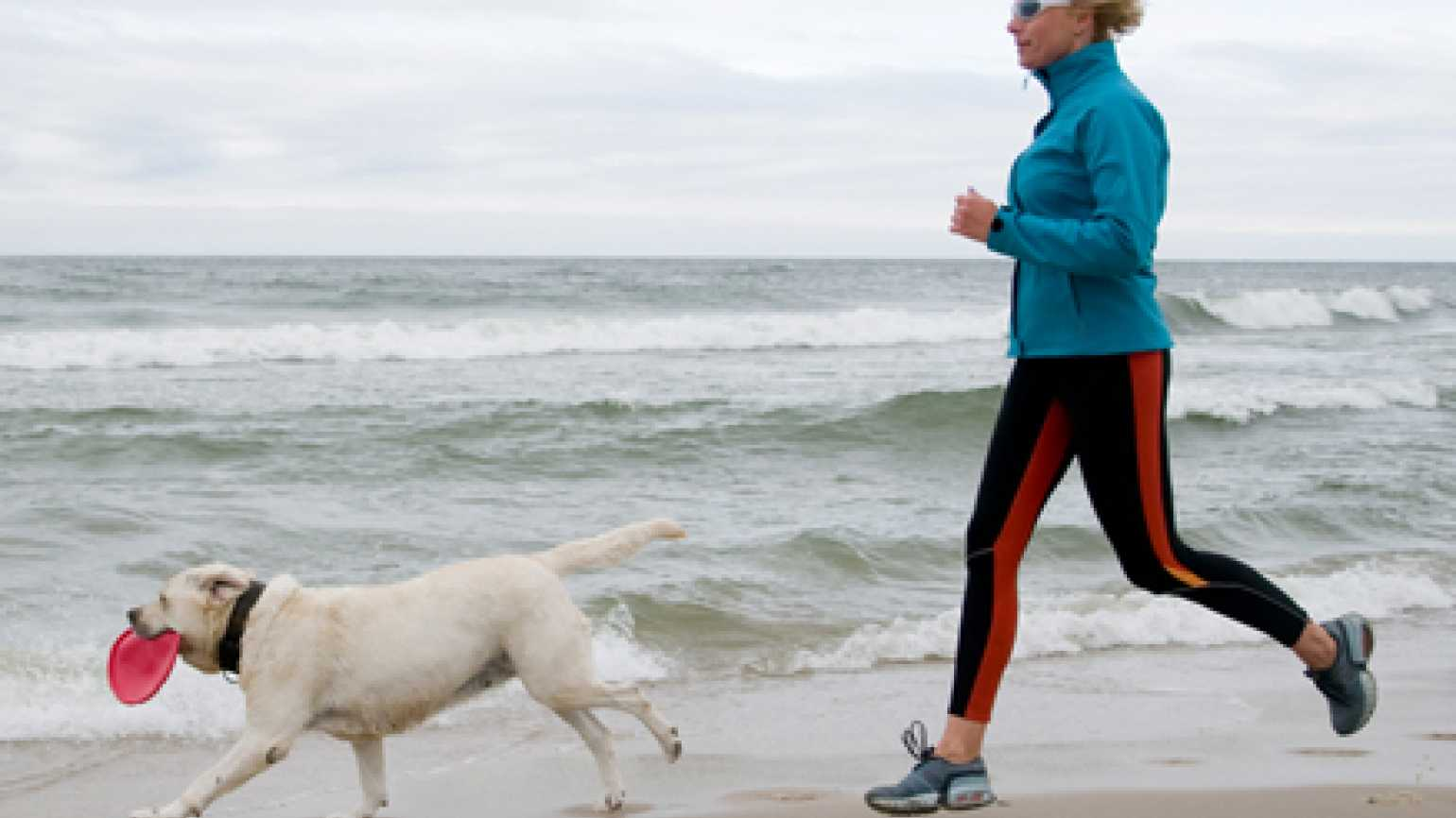 A dog and its human companion go running on the beach