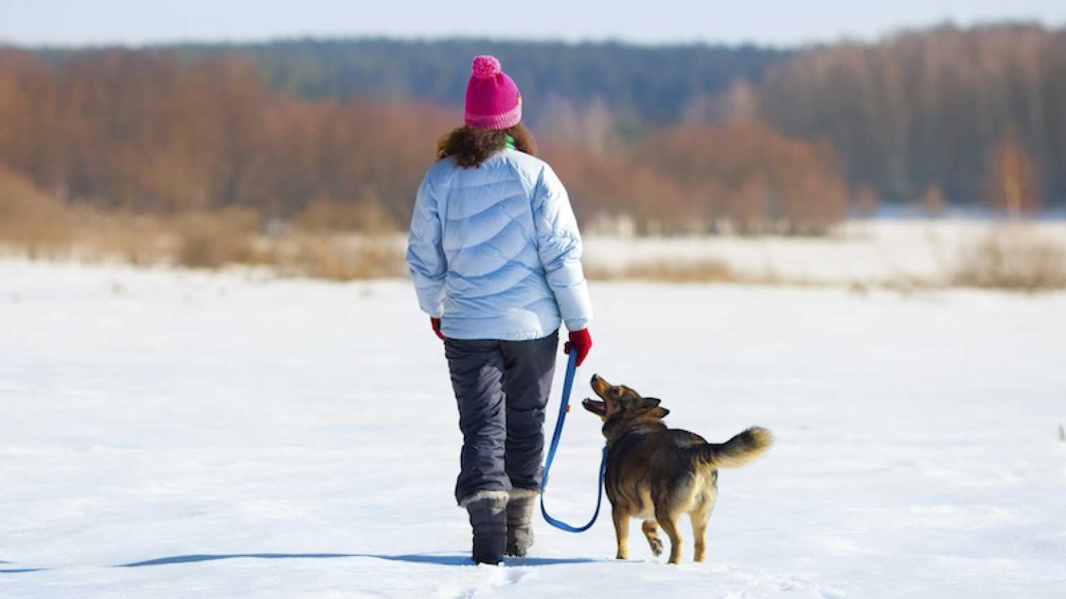 A winter walk. Photo by vvvita, Thinkstock.
