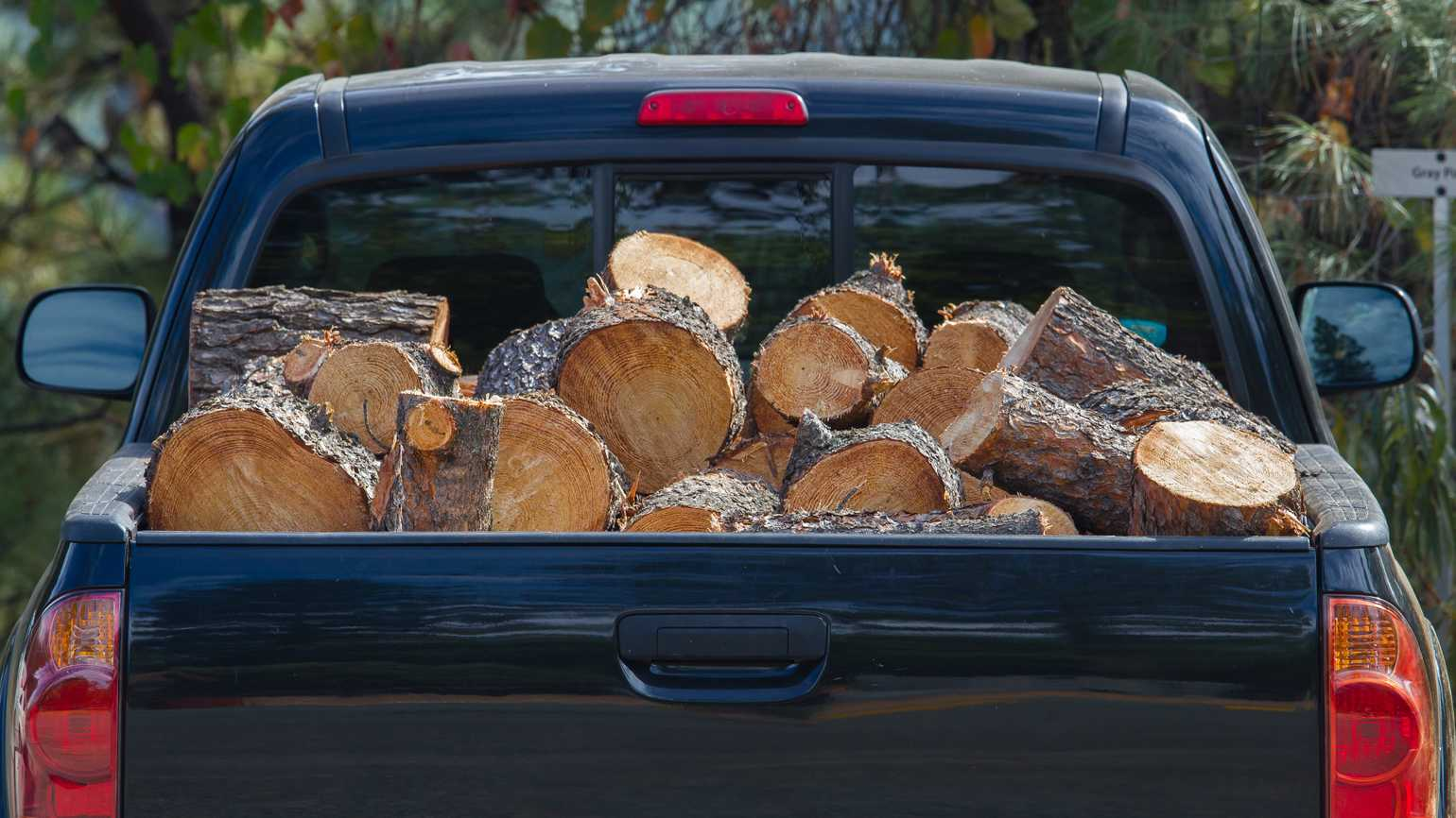 Part of a dark pickup truck trunk full of firewood logs