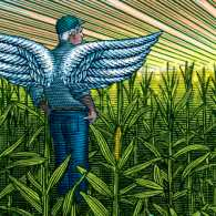 An artist's rendering of an angel in a cornfield