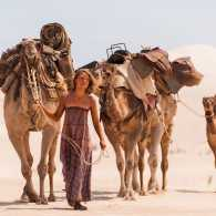 A still from the movie 'Tracks' depicting camels being led through the desert.