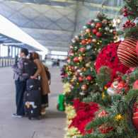 Sounds of Hope: The Airport Caroler