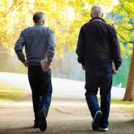 Rear view of two senior men walking in park on sunny Autumn day