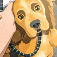 An artist's rendering of a cute cocker spaniel peering up.