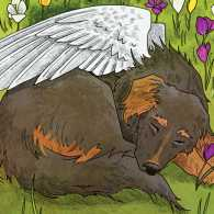 An artist's rendering of a snoozing dog with angel wings