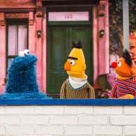 The Sesame Street gang
