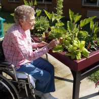 Man Designs Elevated Gardens for People with Accessibility Challenges