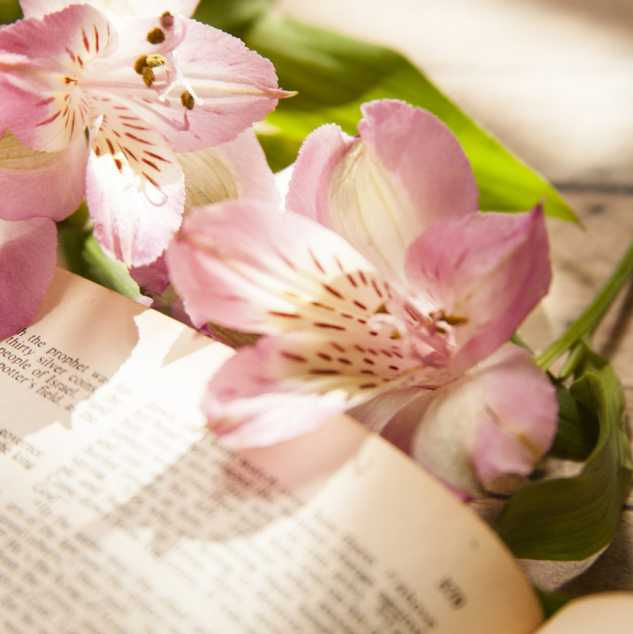 A Bible surrounded by spring flowers.