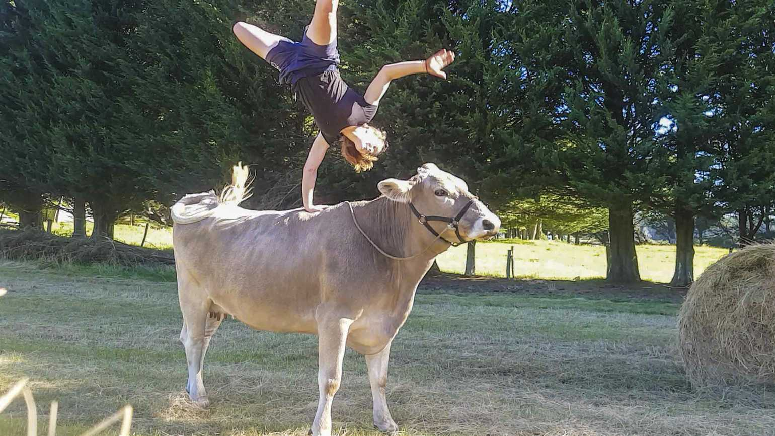 Lilac is Hannah's dream ride and platform for cartwheels and handstands.