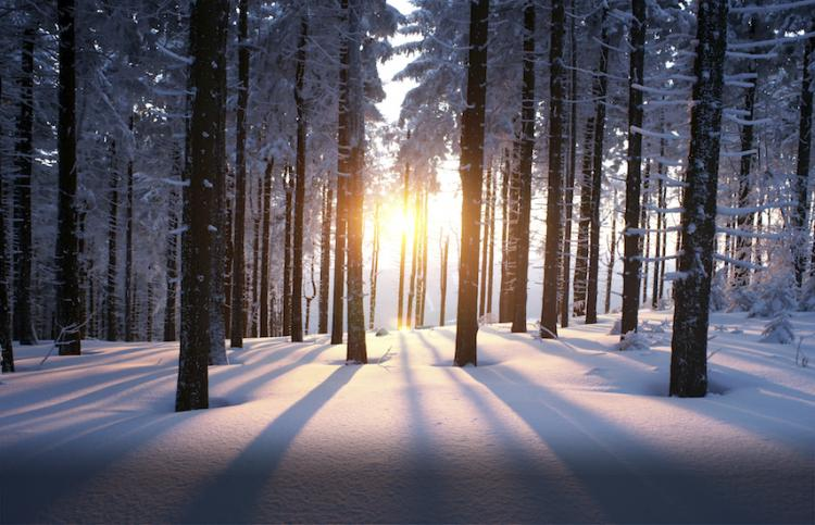 Winter sunset. Photo by psynovec, Thinkstock.