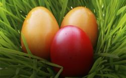 Easter eggs in the grass. Thinkstock.