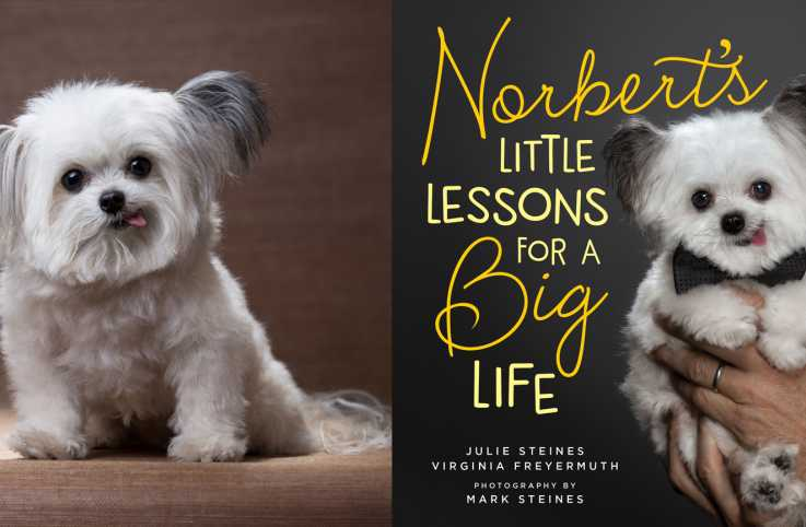 A pensive Norbert alongside the cover of his picture book: Norbert's Little Lessons for a Big Life.