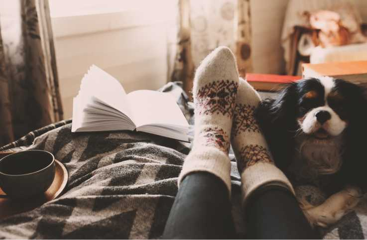 Close up of a woman wearing holidays socks relaxing with a cup of tea, a book, and her dog.