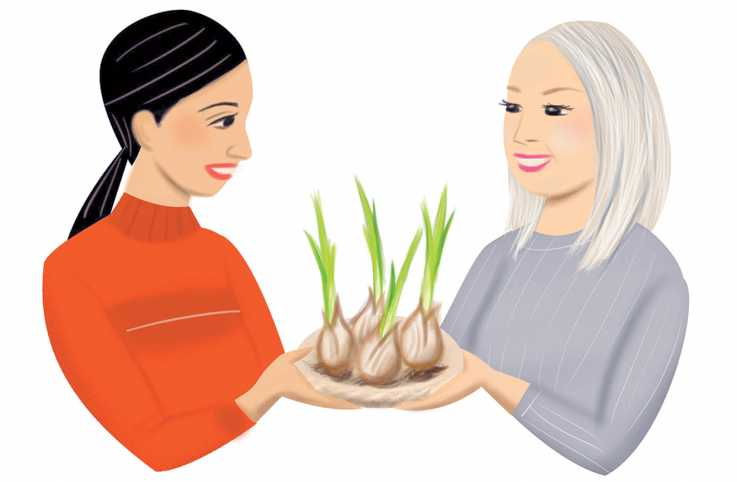 A illustration depicting a young woman and older woman holding sprouted flower bulbs.