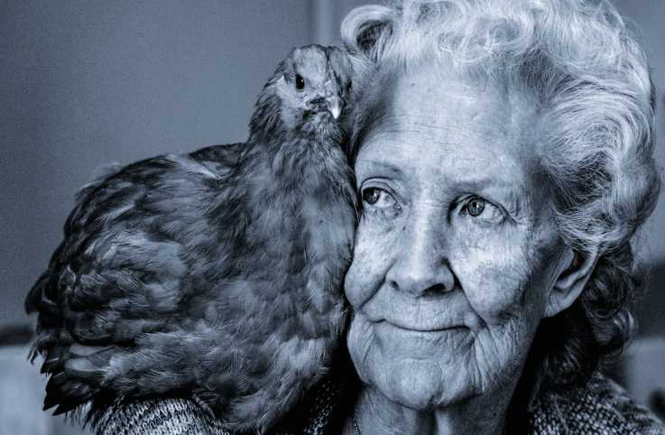 A senior woman with a hen on her shoulder.