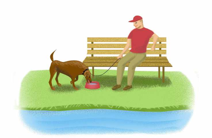 An artist's rendering of a man sitting on a bench as his dog drinks water.