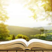 An open book illuminated by rays of sunlight.
