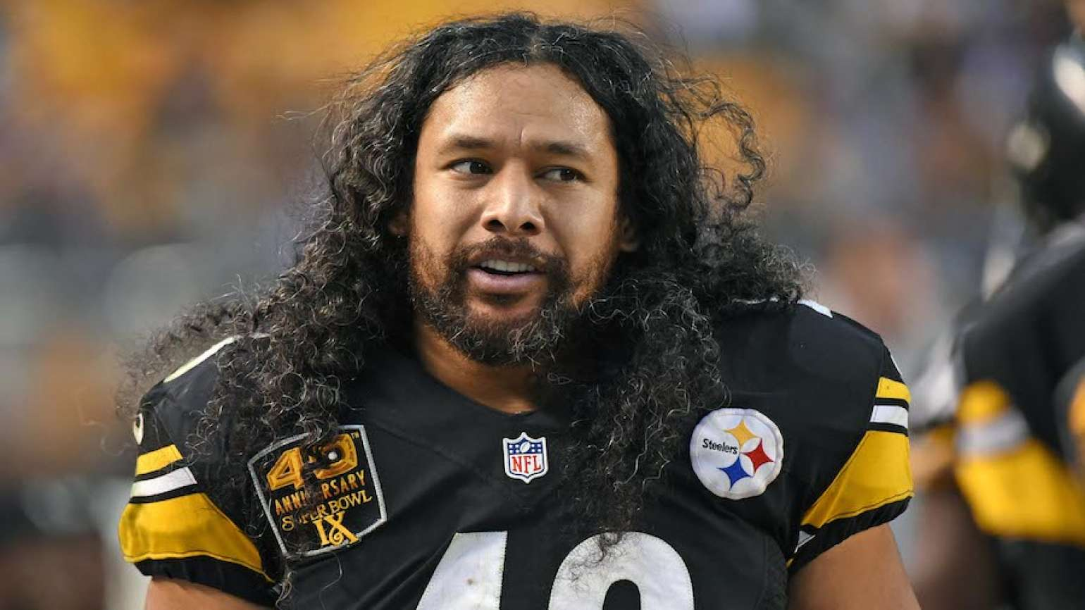 Pittsburgh Steelers safety Troy Polamalu. Photo: Getty Images.