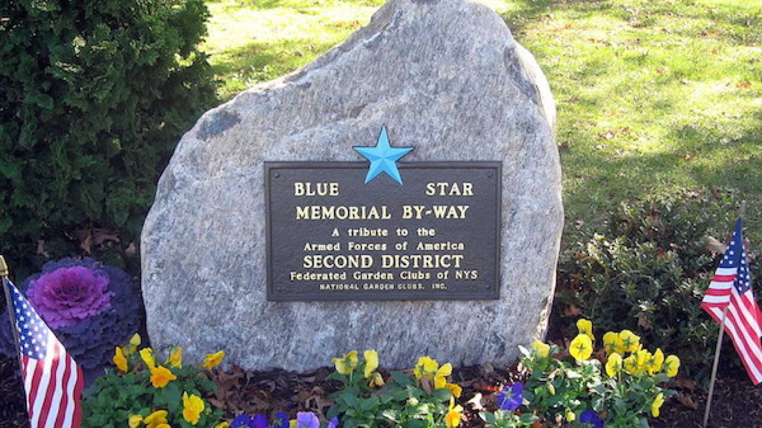 A Blue Star road marker in Long Island, NY.