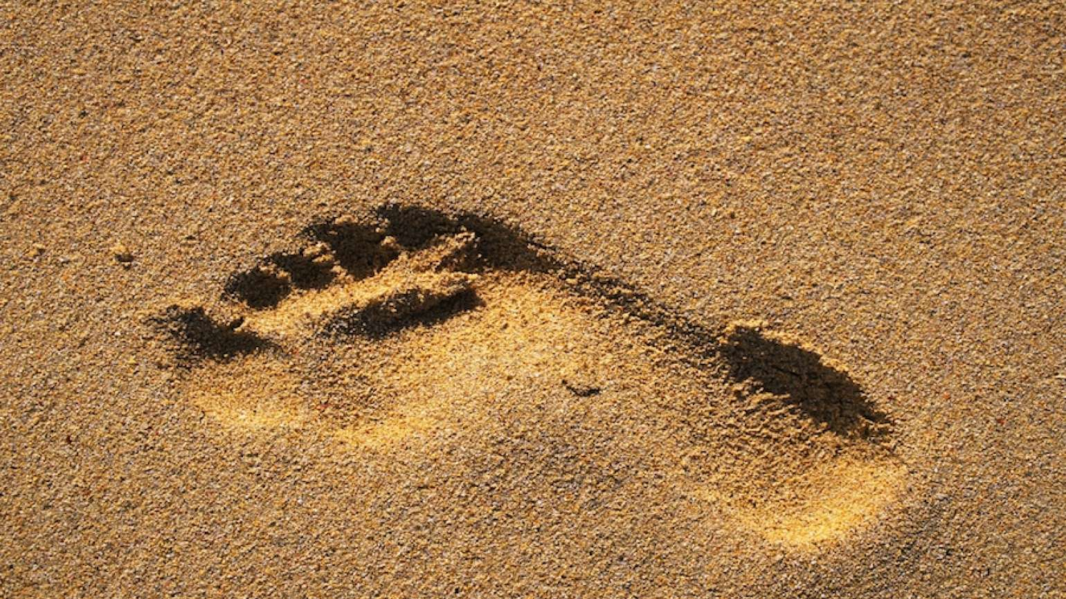Footprint in the sand. Thinkstock.