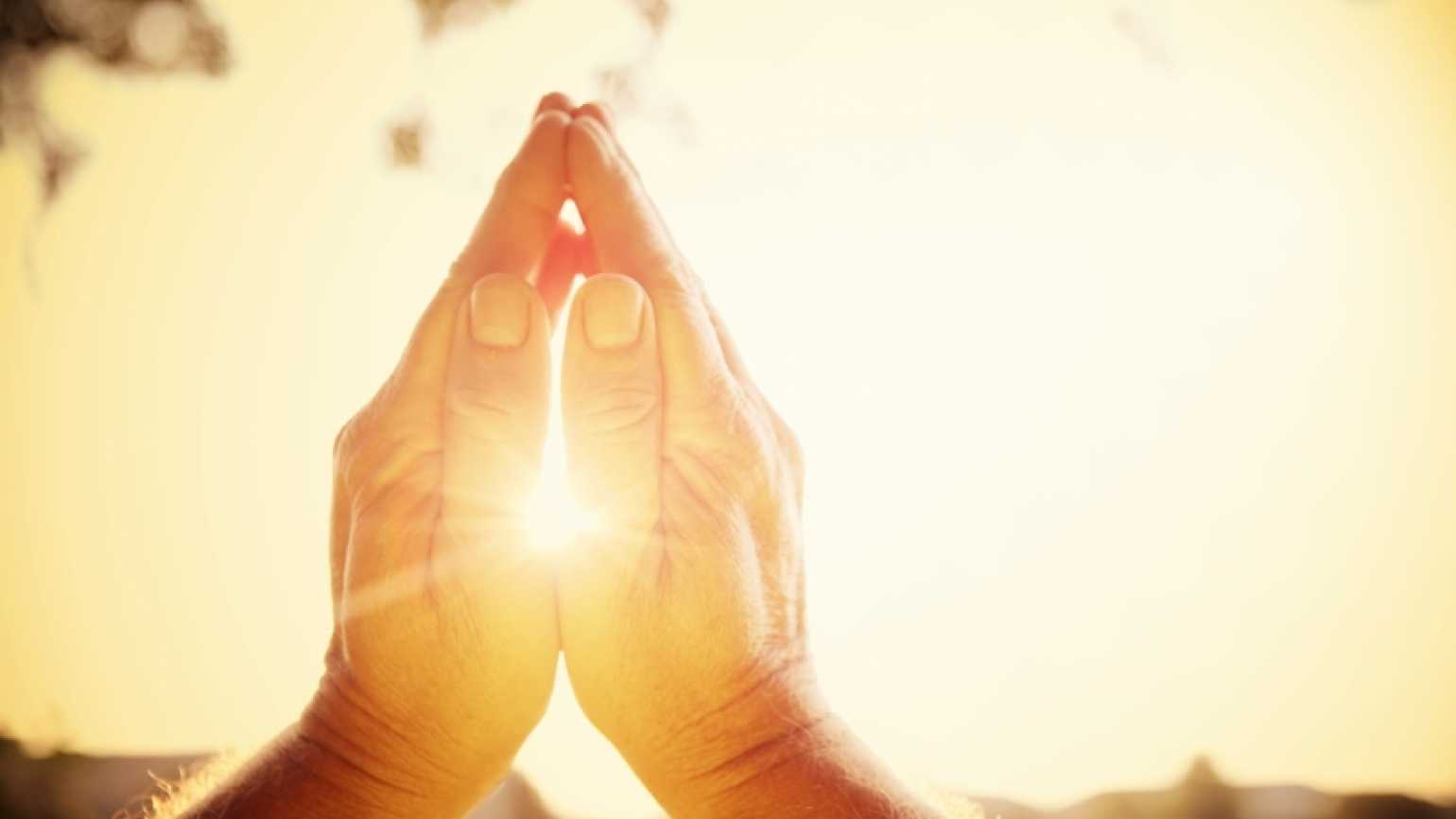 praying hands in the sunlight