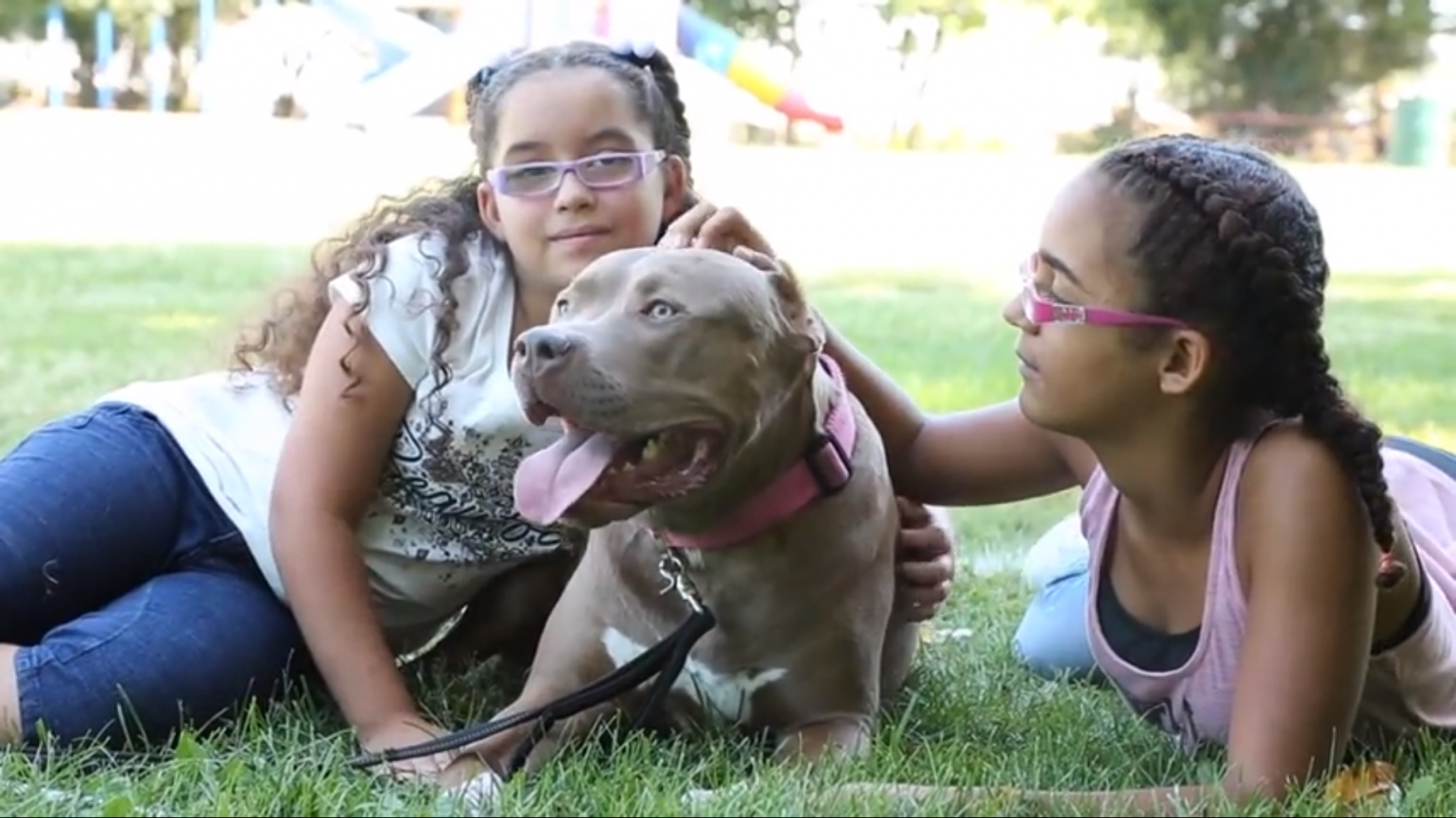 The Dog That Changed Two Little Girls' Lives