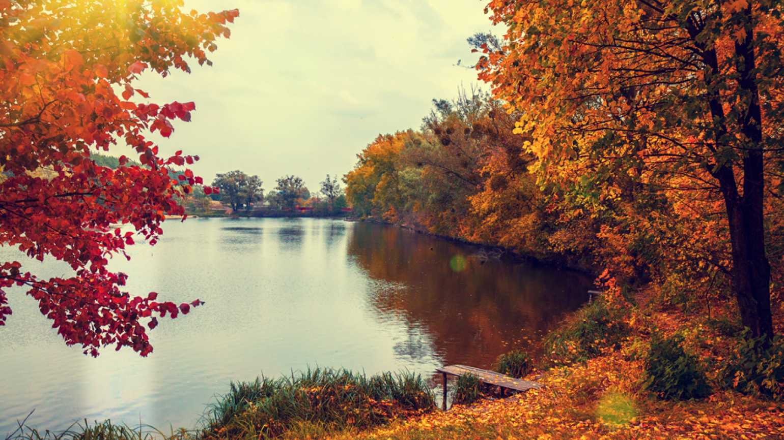 Fall foliage surrounds a lake