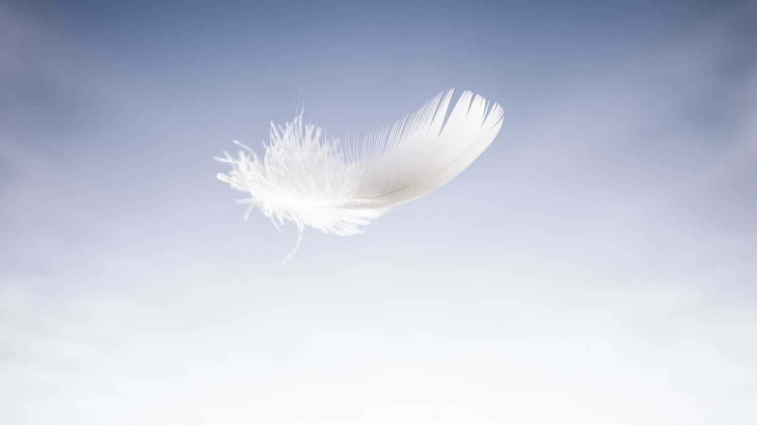 An angelic feather floating in mid air.