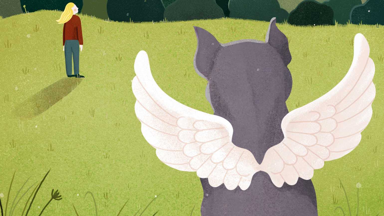 Josephine watches the sky as her winged pit bull, Beau observes behind her.