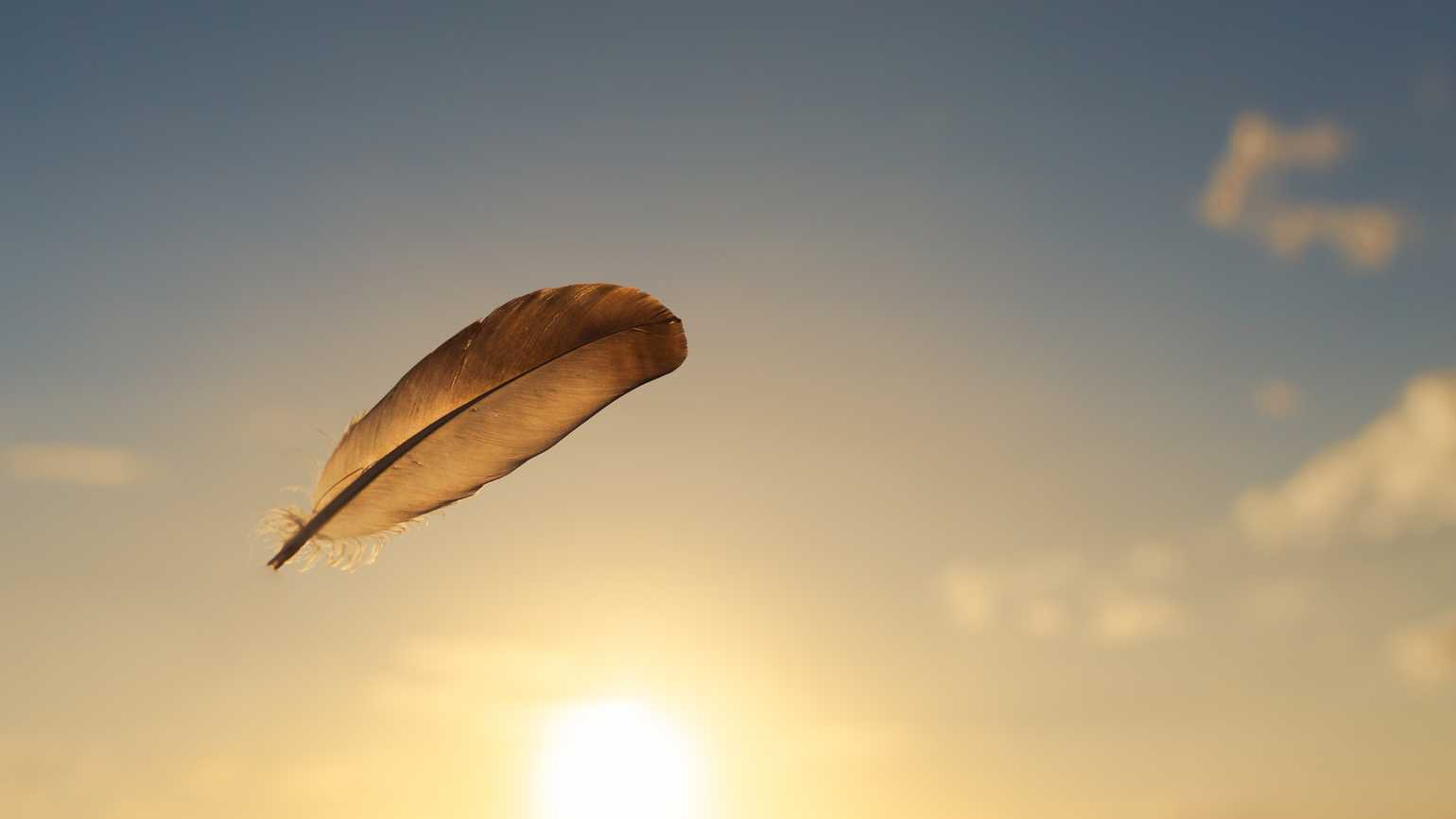 A lone feather in the sky.