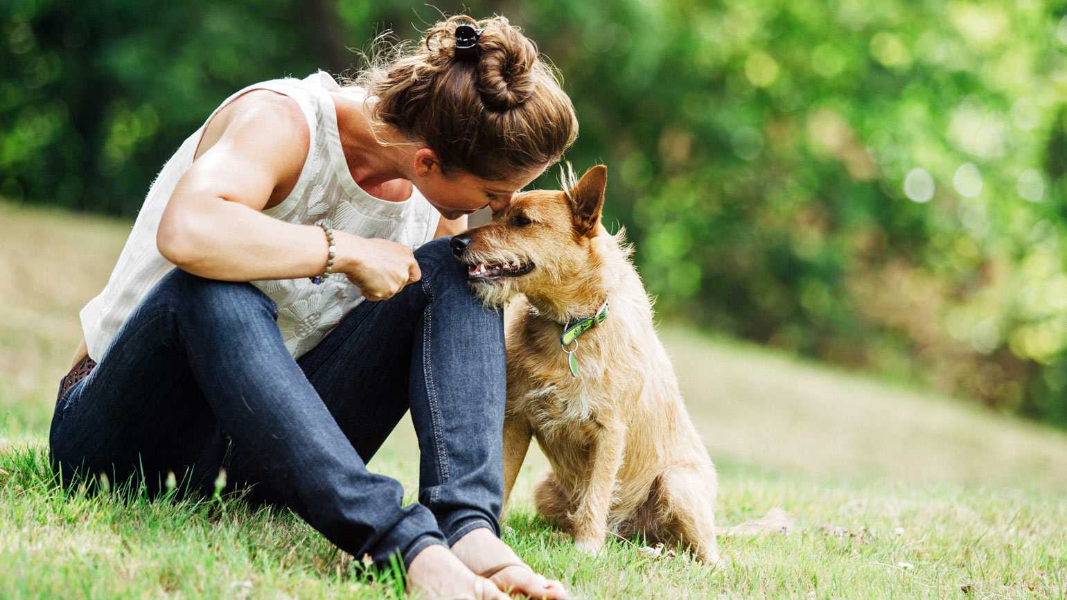 5 Ways to Heal When Grieving the Loss of a Pet