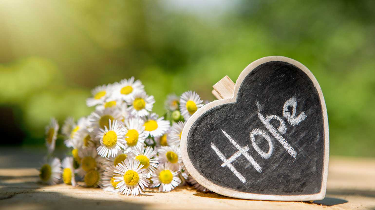 Heart with hope written on it coupled with a bouquet of daisies.
