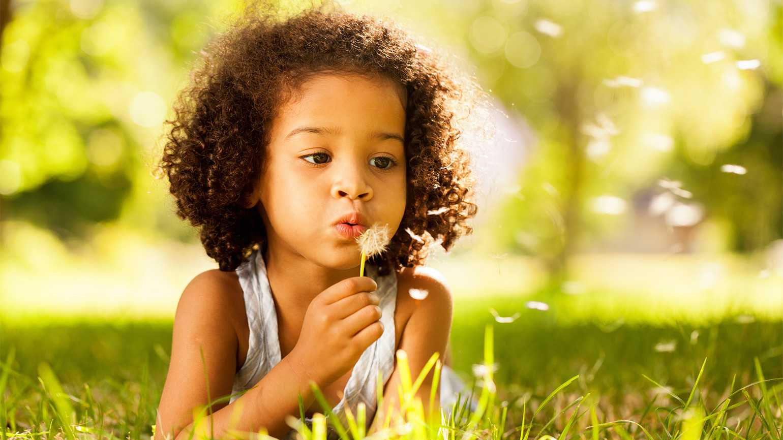 A little girl blows the seeds of a dandelion to the wind