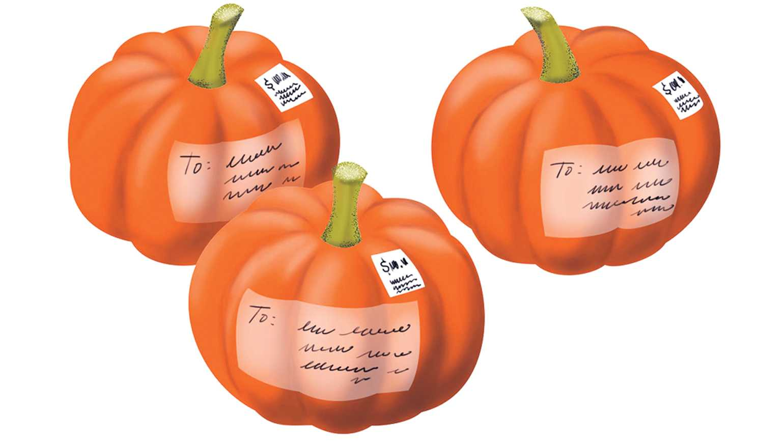 An illustration depicting three mini pumpkins with mailing address labels.