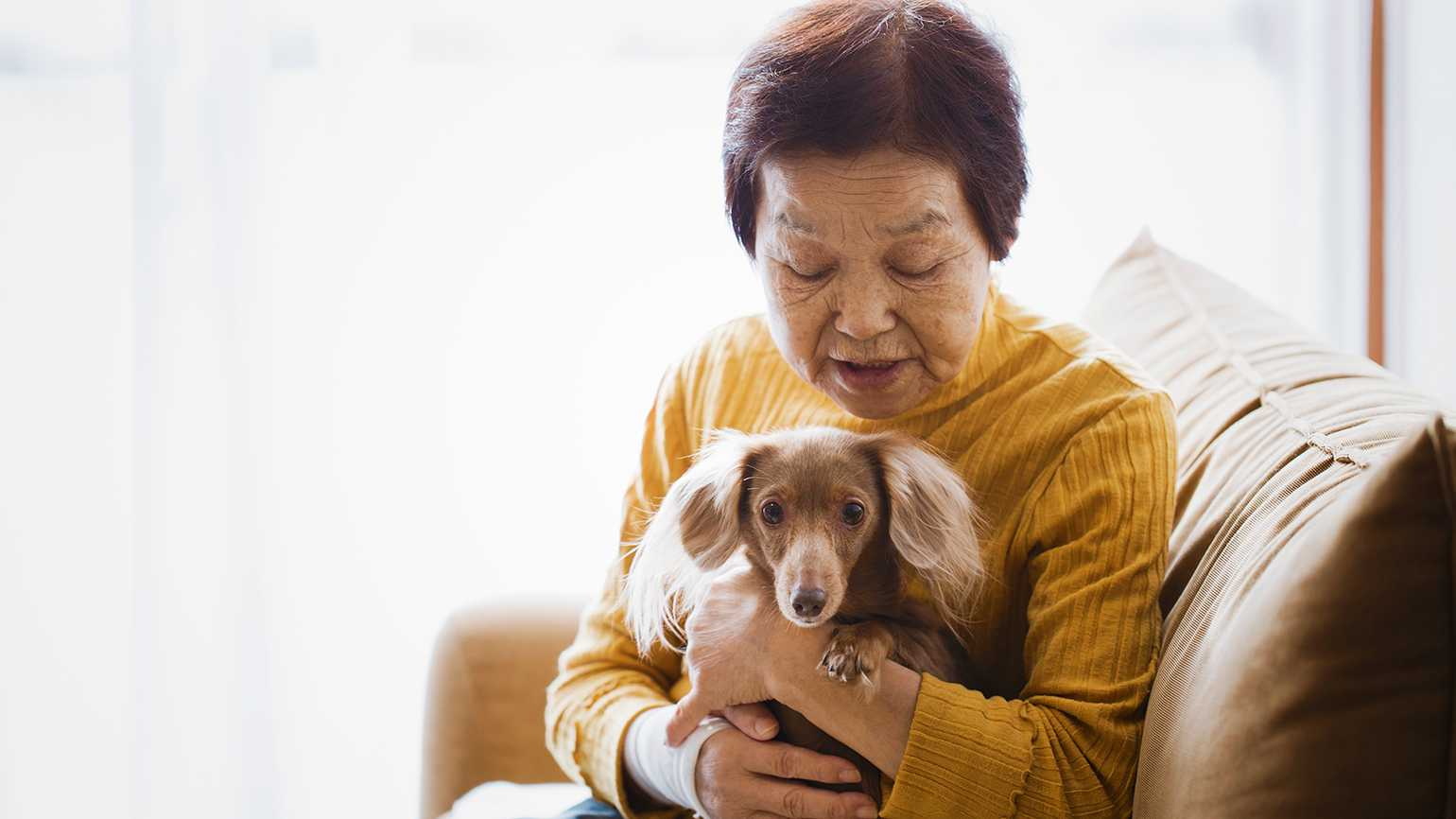 A senior woman cuddles a small dog