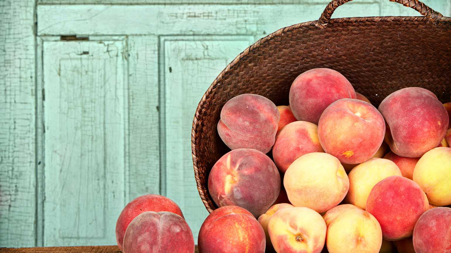 10 Summer Favorites: Fresh Produce and Recipes