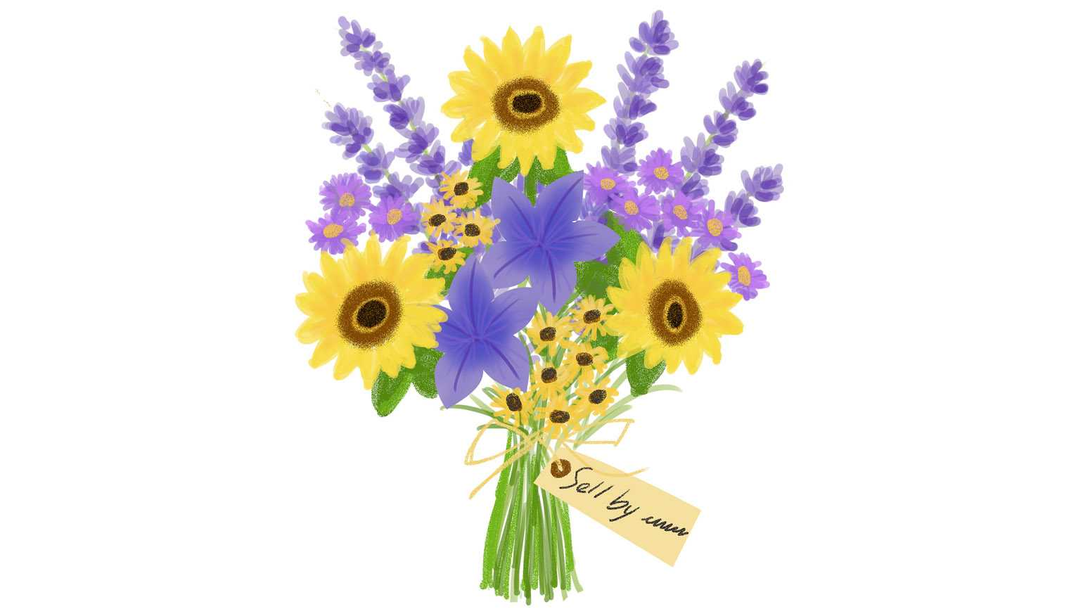 An artist rendering of a colorful bouquet which included sunflowers, violets, and daisies.