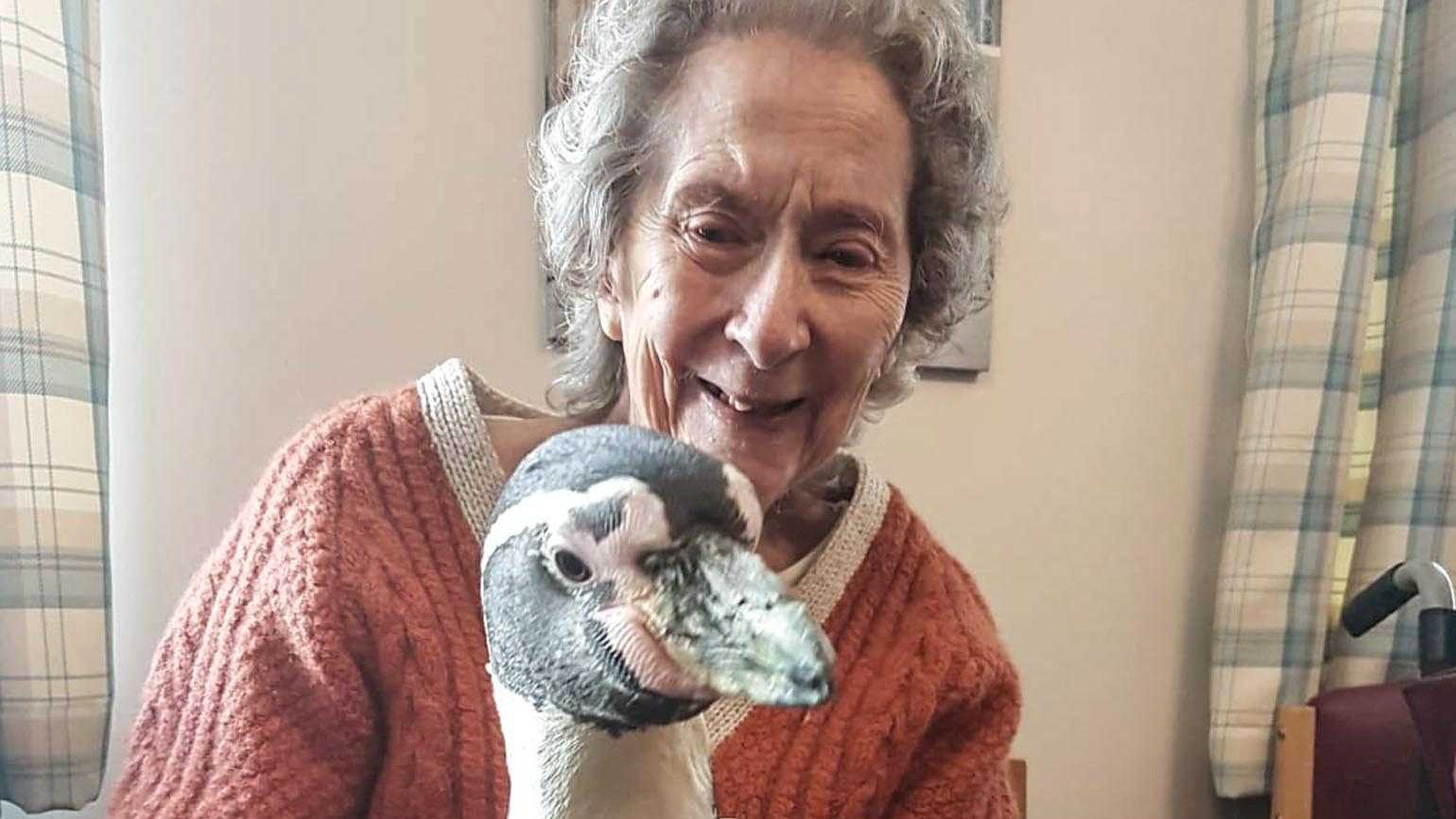 Joyce Gardner and a Humboldt penguin.