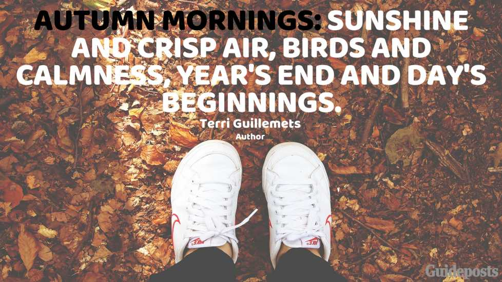 Autumn mornings: sunshine and crisp air, birds and calmness, year's end and day's beginnings. —Terri Guillemets