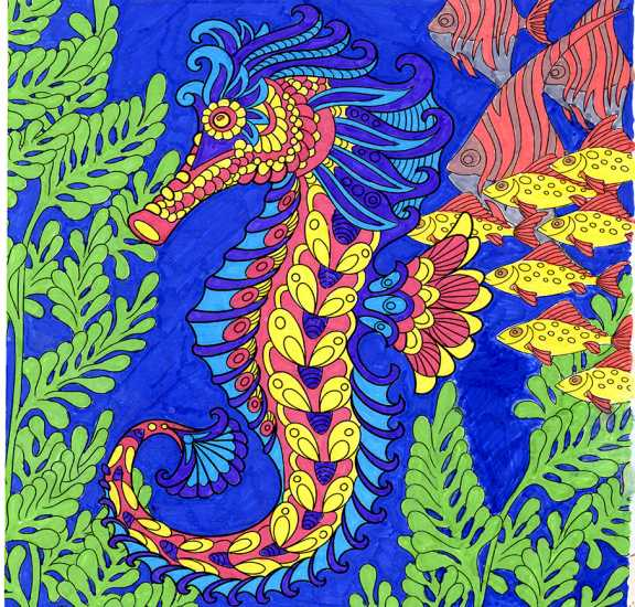 Seahorse colored by Alexandra Reynolds, Elkins Park, Pennsylvania