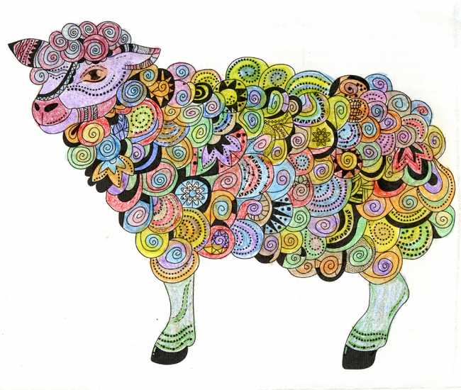 Sheep colored by Sherri Byrd, Weatherford, Texas