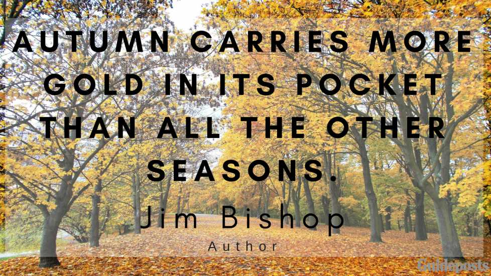 Autumn carries more gold in its pocket than all the other seasons. —Jim Bishop