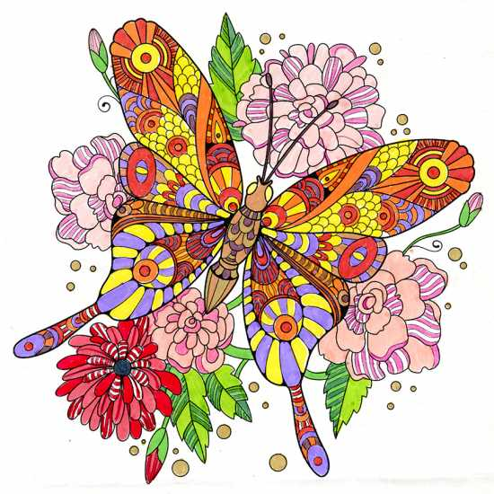 Butterfly colored by Judy Hoffman