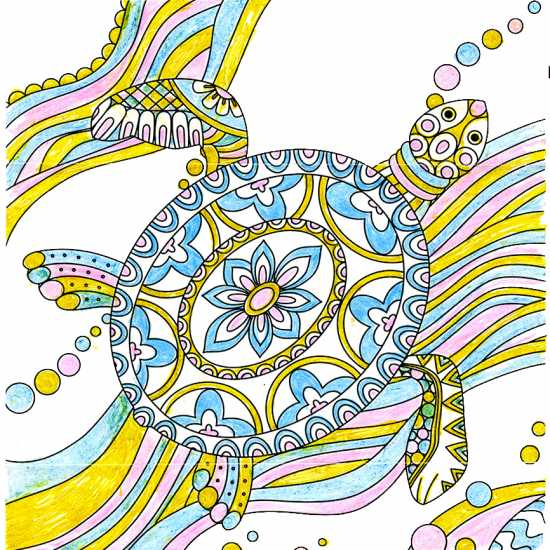 Turtle colored by Barbara J. Horbasch, Roseville, California