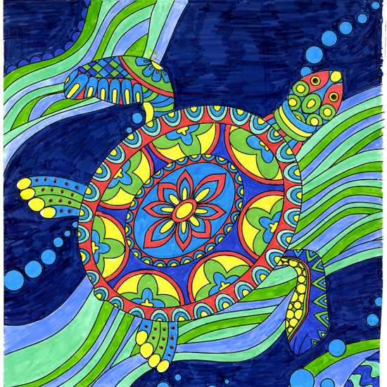 Turtle colored by Donna L. Foster, Sarasota, Florida