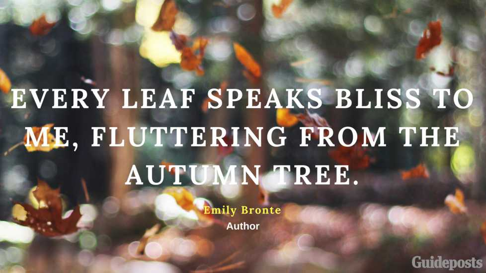 Every leaf speaks bliss to me, fluttering from the autumn tree. —Emily Bronte