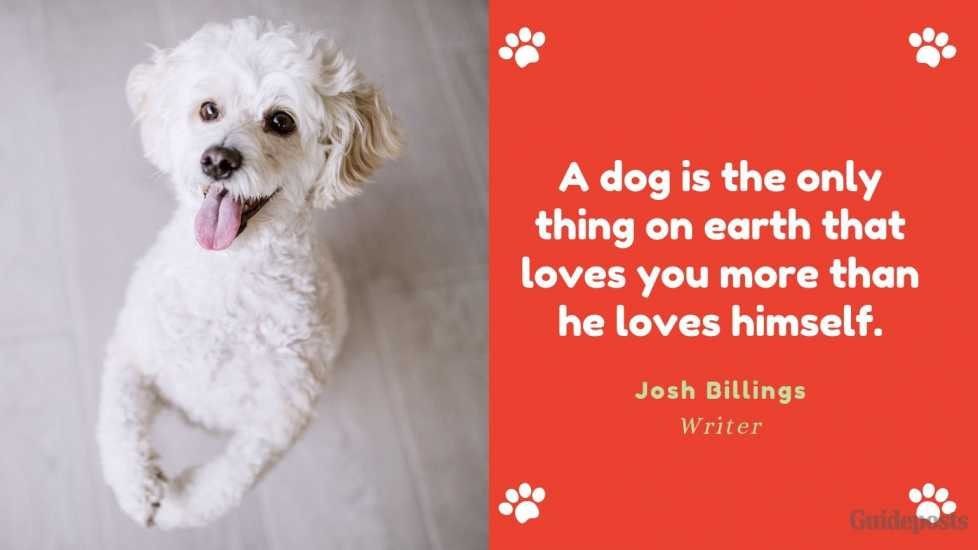 Sentimental Dog Quote: A dog is the only thing on earth that loves you more than he loves himself. —Josh Billings, Writer dog lover