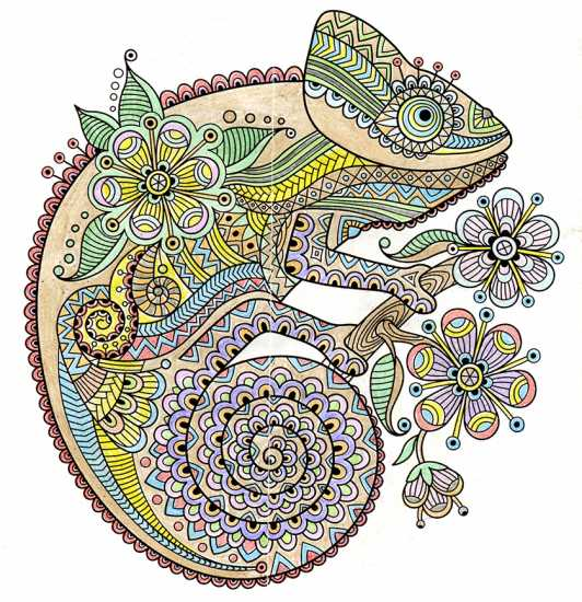 Chameleon colored by Angy